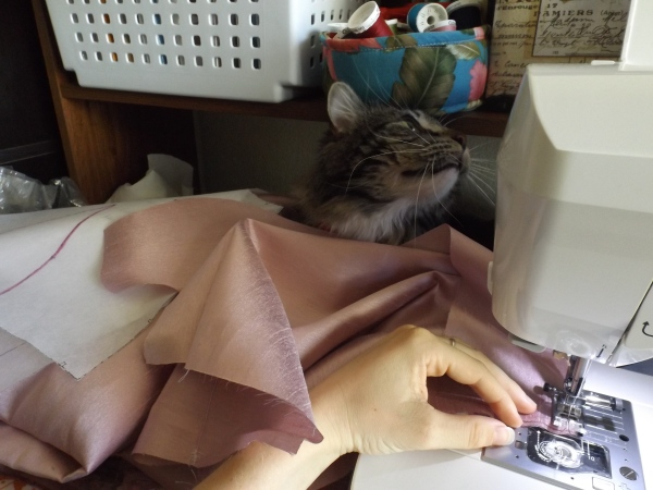 Here's some cat tax to perk up from the sadness! My kitty Chimcerii is 'helping' me sew.